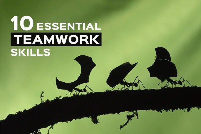 The 10 Essential Teamwork Skills And What You Should Know About