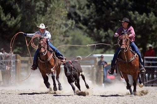 Fall Town Wallpaper Team Roping Rural Recreation Te Ara Encyclopedia Of