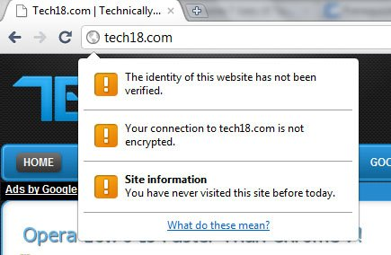 chrome 7 page info bubble image1 Google Instant Search Integrated in Chrome 7!