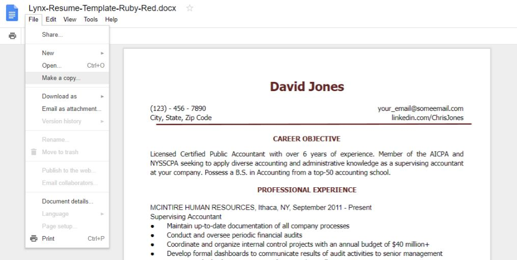 10+ Google docs Resume Template in 2018 - Download Best CV themes