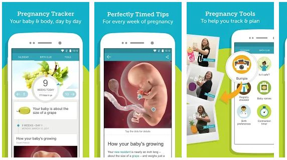 Top 10 Best pregnancy tracker apps (android/iPhone) 2019