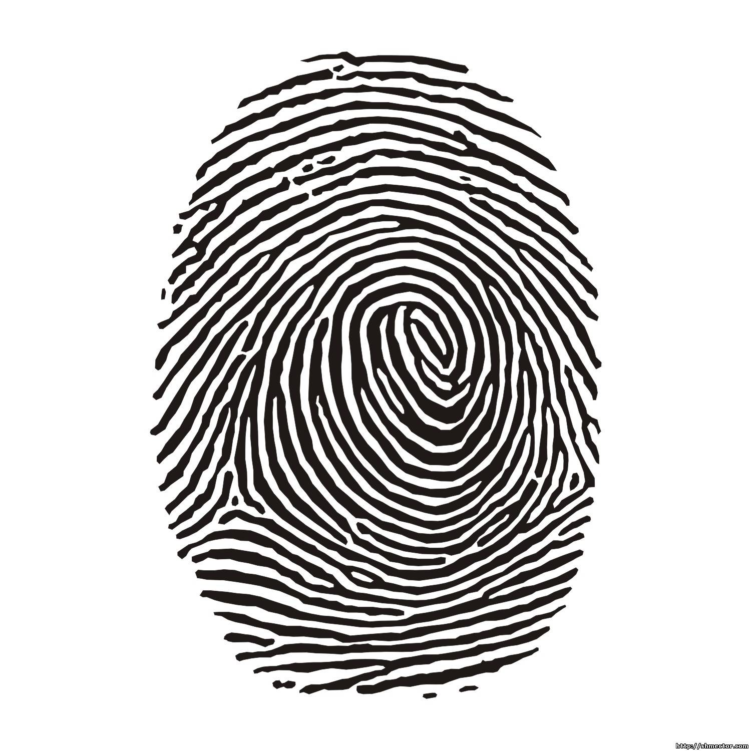 Fingerabdruck Baby Russian Scientists Use Fingerprints To Find Most Suitable