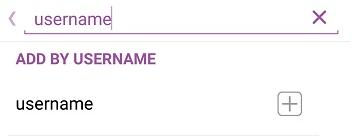 add friends by username