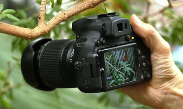 Fuji HS 50 EXR Featured