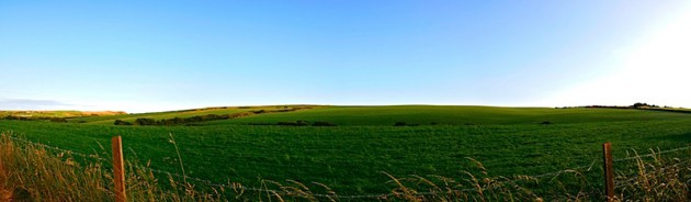 Green fields in Pembrokeshire