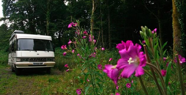 Wildcamping near Shanagolden
