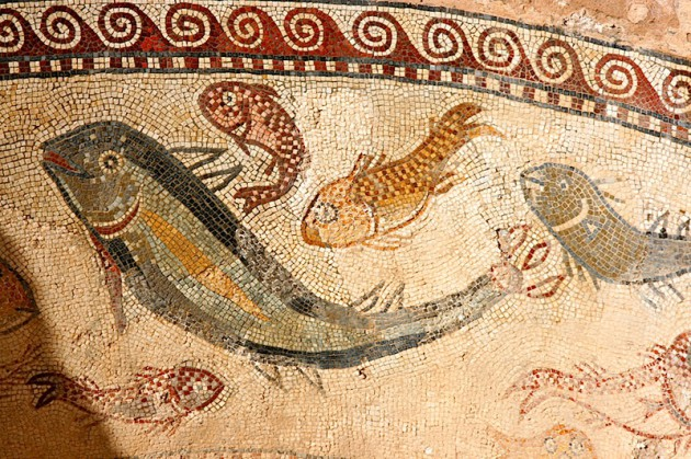 Fish mosaic detail