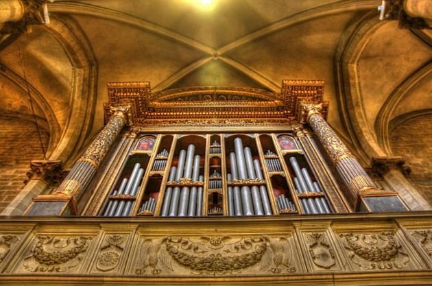 Arezzo duomo's organ