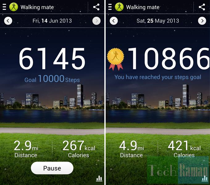 walking-mate-goals