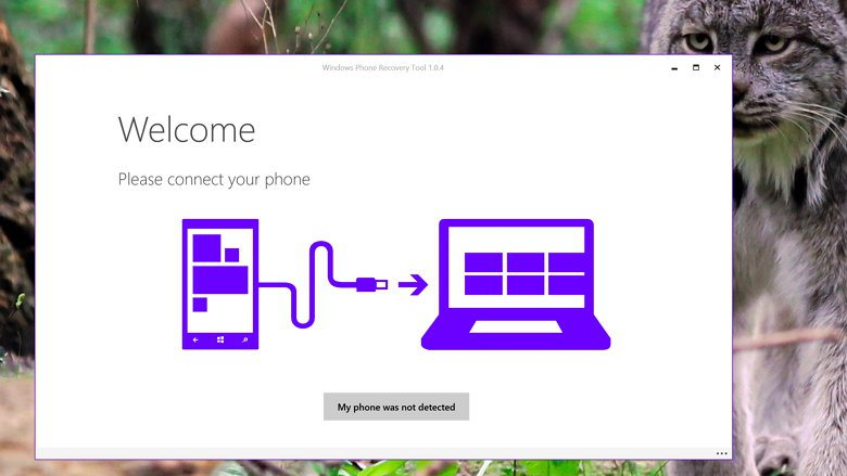windows-phone-recovery-tool-