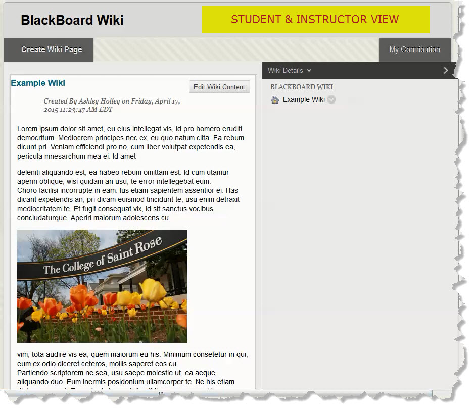 Blackboard Wikis 101 \u2013 TechTalk