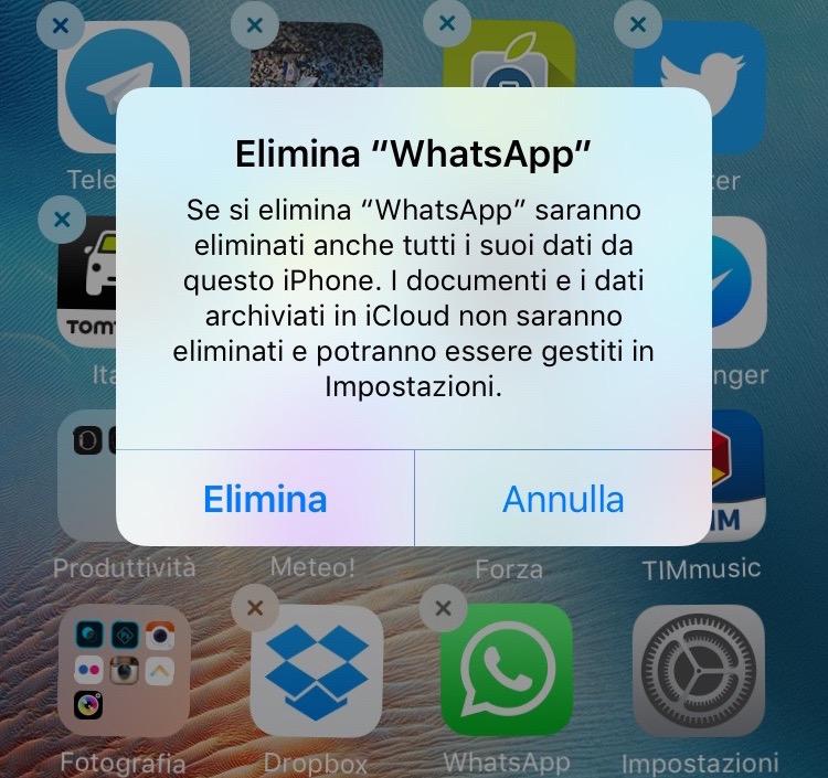 scaricare messaggi whatsapp da iphone su pc