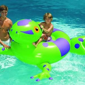 90623 pool frog