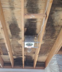 Cathedral Ceilings  Mold and Moisture  Problems and ...
