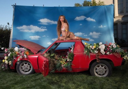 Beyonce beyonce Mother-Earth, Beyonce Beyonce Maternity Photos BellaNaija 10