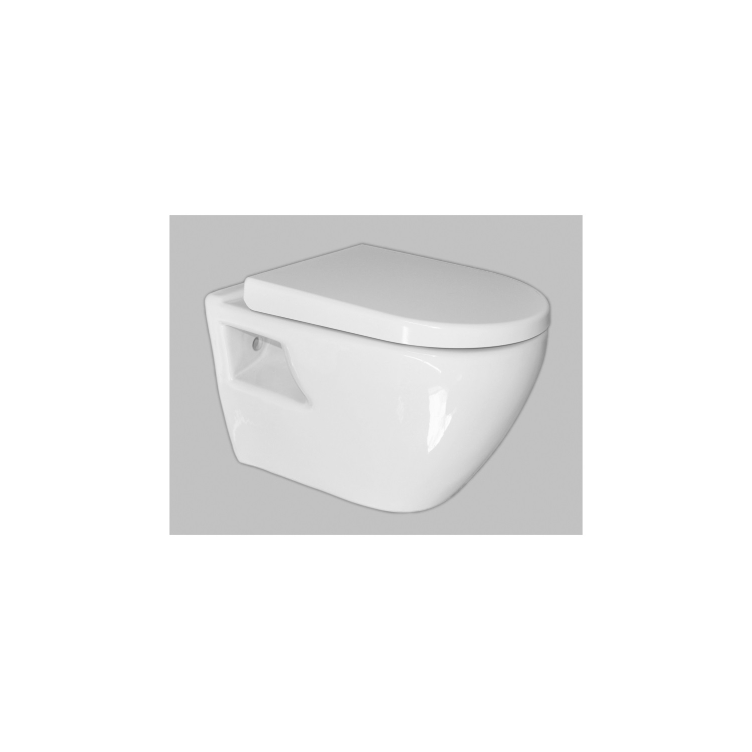 Compact Hangtoilet Hangtoilet Kopen Wandcloset Sanicare Soft Close Toiletzitting