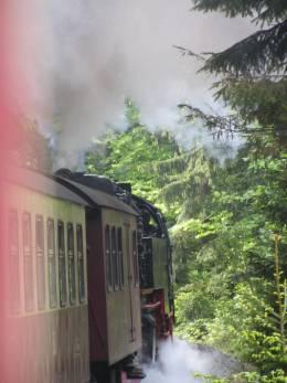 Dampflok auf Brocken (28)
