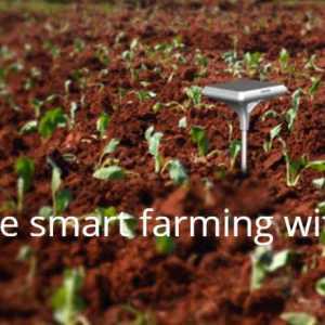 Zenvus – A New AgTech Company for Smart Farming