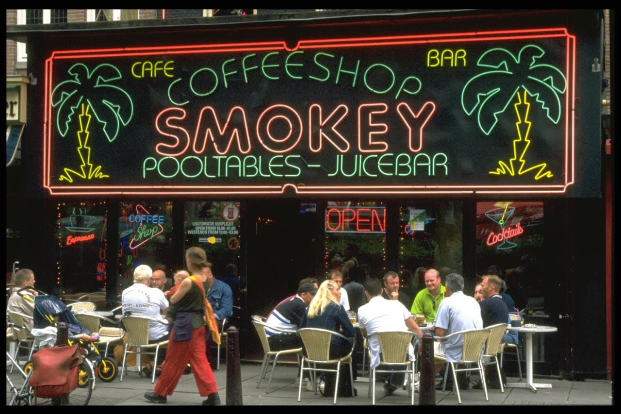 Plant Shop Amsterdam Why Are Amsterdam 39s Cannabis 39coffee Shops 39 Closing