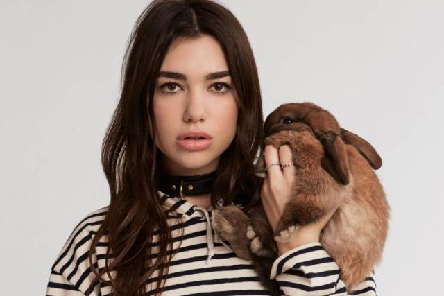 Dua Lipa, singer, songwriter, facts, English, kosovo, new rules, artist