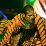 Kushal and Mohena Kumar in aggressive and thrill of a chase of Tiger