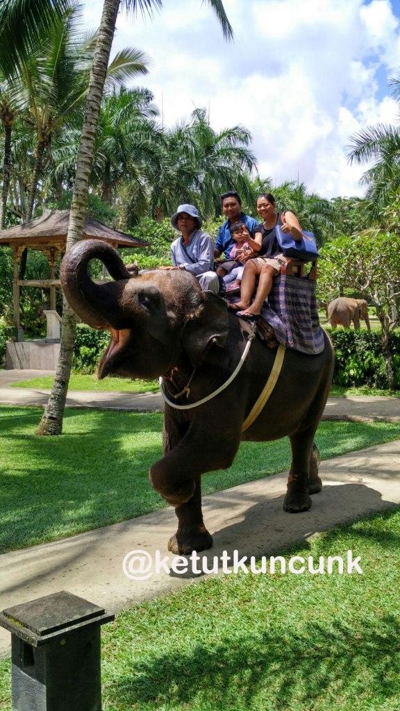 naik-gajah-di-taro-ubud