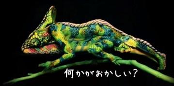 Chameleon   impressive creation   Fine Art Bodypainting by Johannes Stötter   YouTube