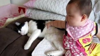 二人は仲良し!赤ちゃんにちょっかいだされるけど、ずっと寄り添ってあげる猫