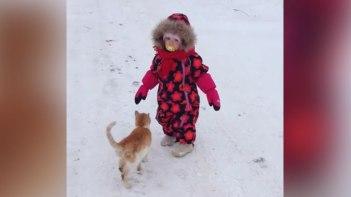 仲良くお散歩〜と思ったら!-猫の激しい愛情表現に小さい子供もビックリ!