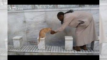 メッカで見かけた優しい光景。水場で水を飲みたそうにしているネコに水を飲ませる心優しい男性