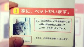 もしもの時、大切な家族のために「家に、ペットがいます。」カードを!-