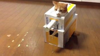 箱に入るのが大好きなので戦車を作ってみた。中にネコさんが入ってくれたけど爆発しました。