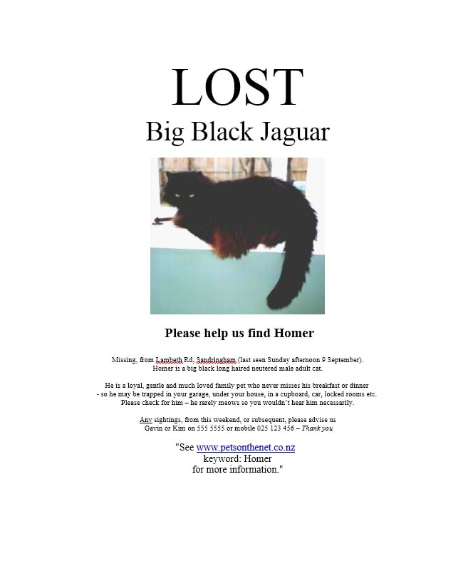 40 Lost Pet Flyers Missing Cat / Dog Poster - Template Archive - lost dog flyer template