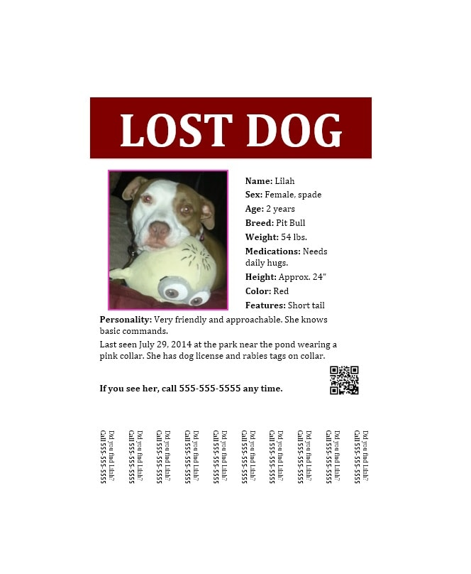 Lost Dog Flyer Examples - Unitedijawstates - Lost Dog Flyer Examples