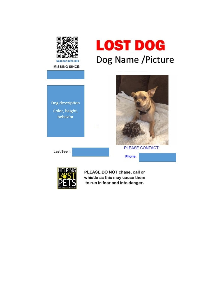Lost dog poster template word - cafenewsinfo