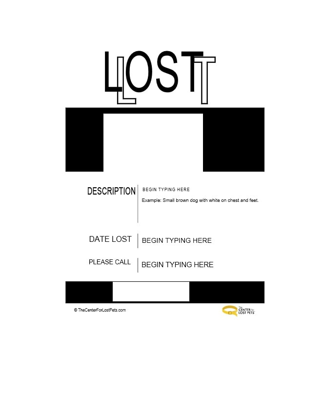 40 Lost Pet Flyers Missing Cat / Dog Poster - Template Archive - Lost Dog Flyer Examples