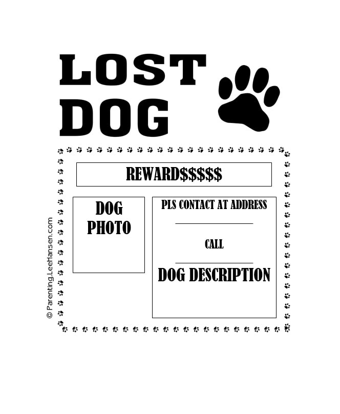 40 Lost Pet Flyers Missing Cat / Dog Poster - Template Archive