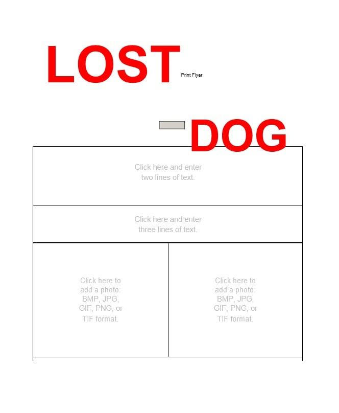 lost flyer - Carnavaljmsmusic