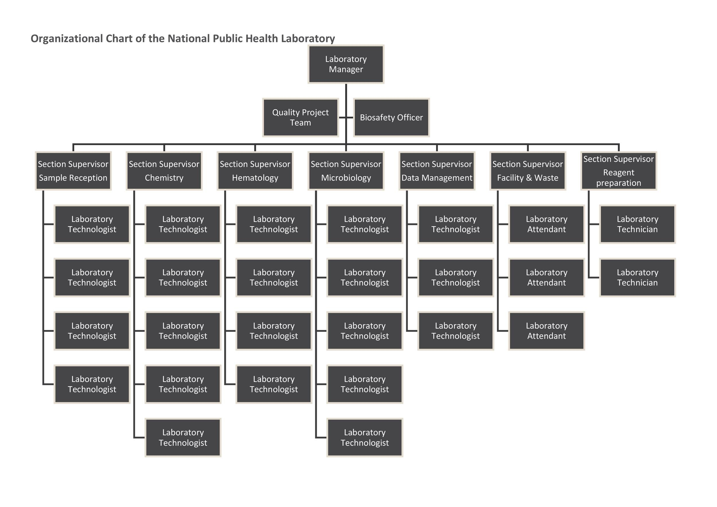 40 Organizational Chart Templates (Word, Excel, PowerPoint) - project organization chart