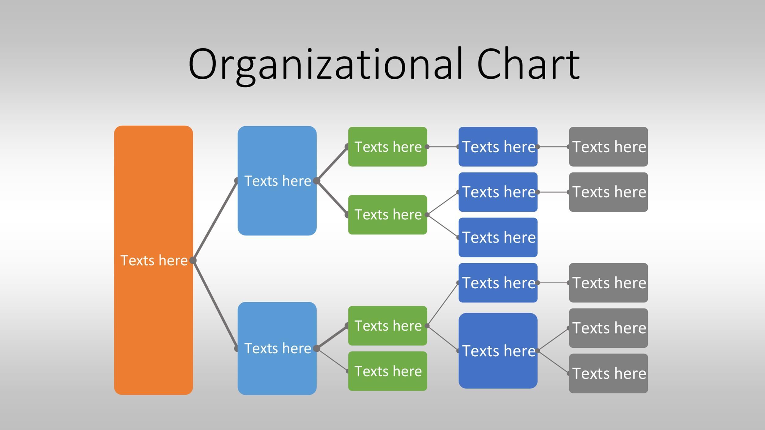 staff organogram template