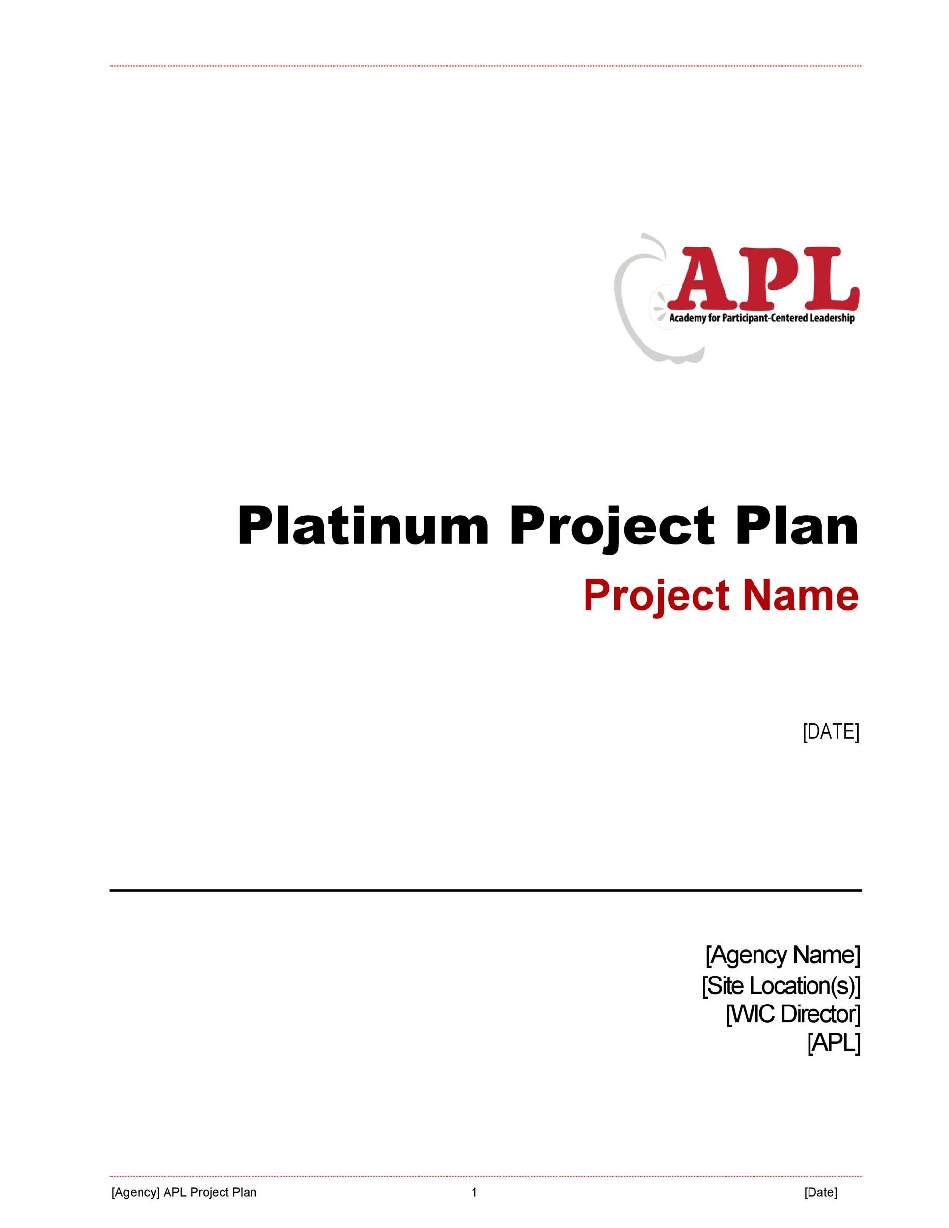 48 Professional Project Plan Templates Excel, Word, PDF - Template Lab - project plan template