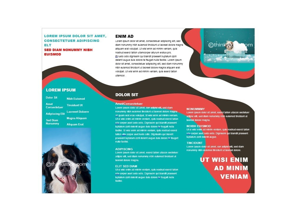 31 FREE Brochure Templates (Word + PDF) ᐅ Template Lab