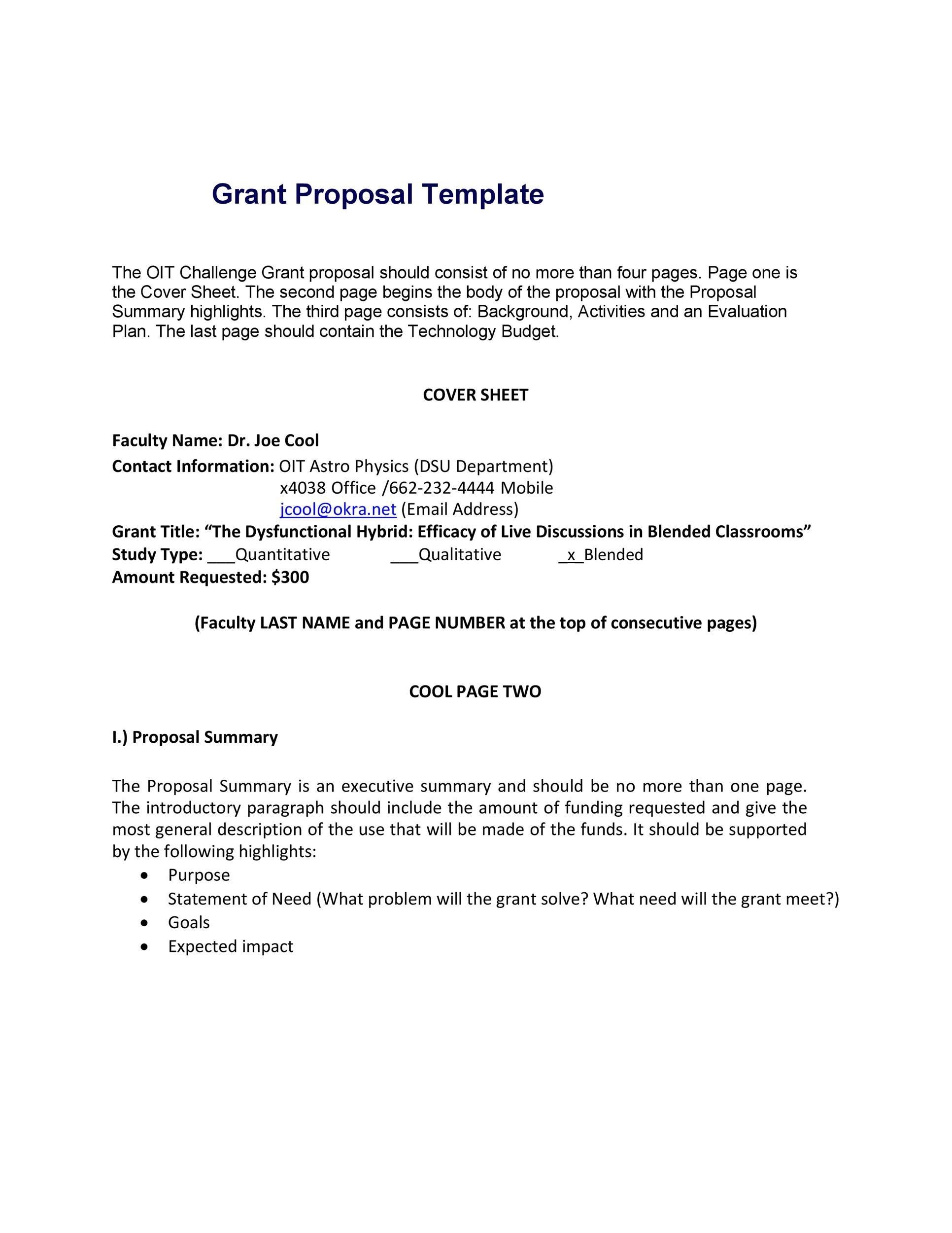 one page summary template templatebillybullock - non profit proposal template
