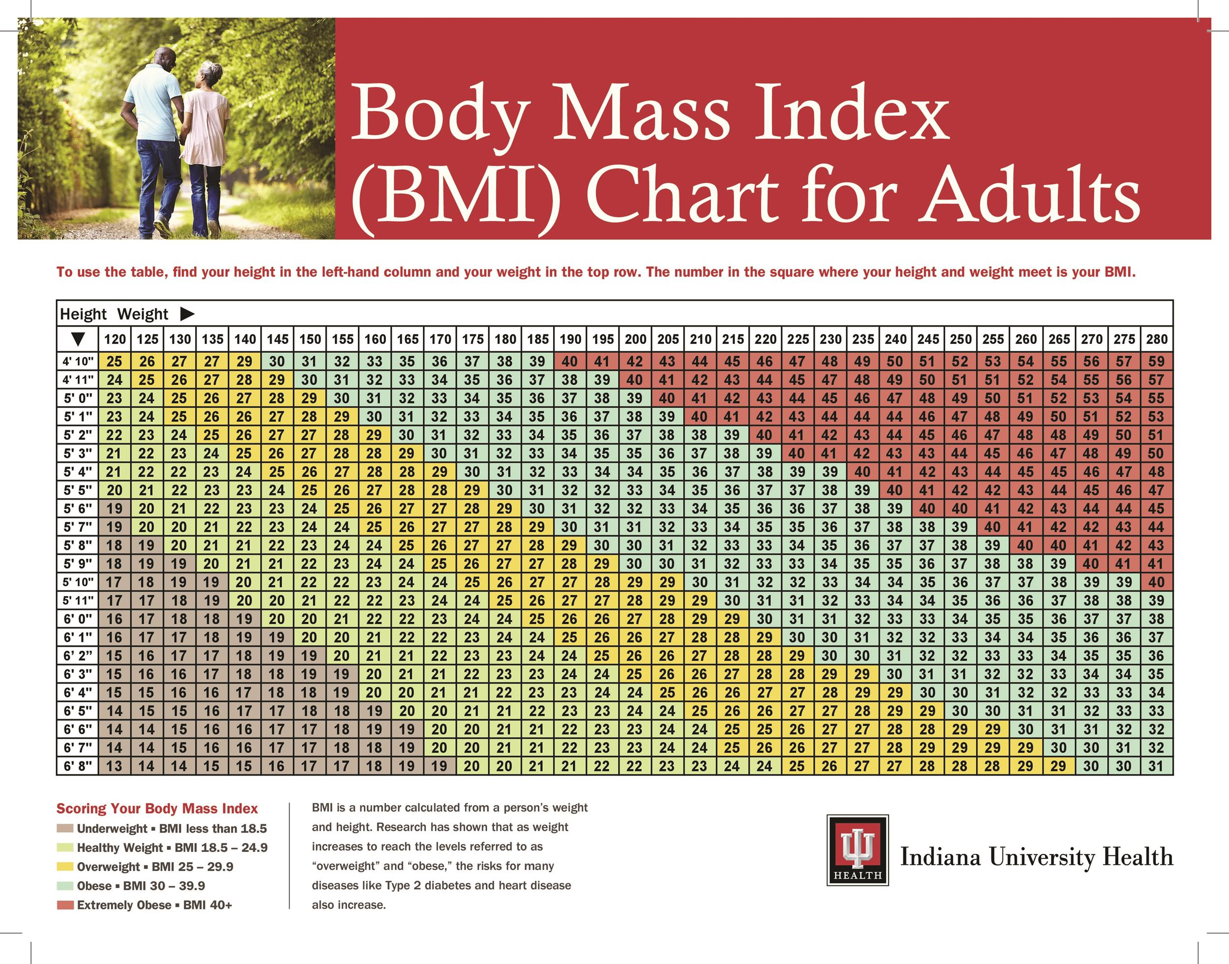 36 Free BMI Chart Templates (for Women, Men or Kids) ᐅ Template Lab