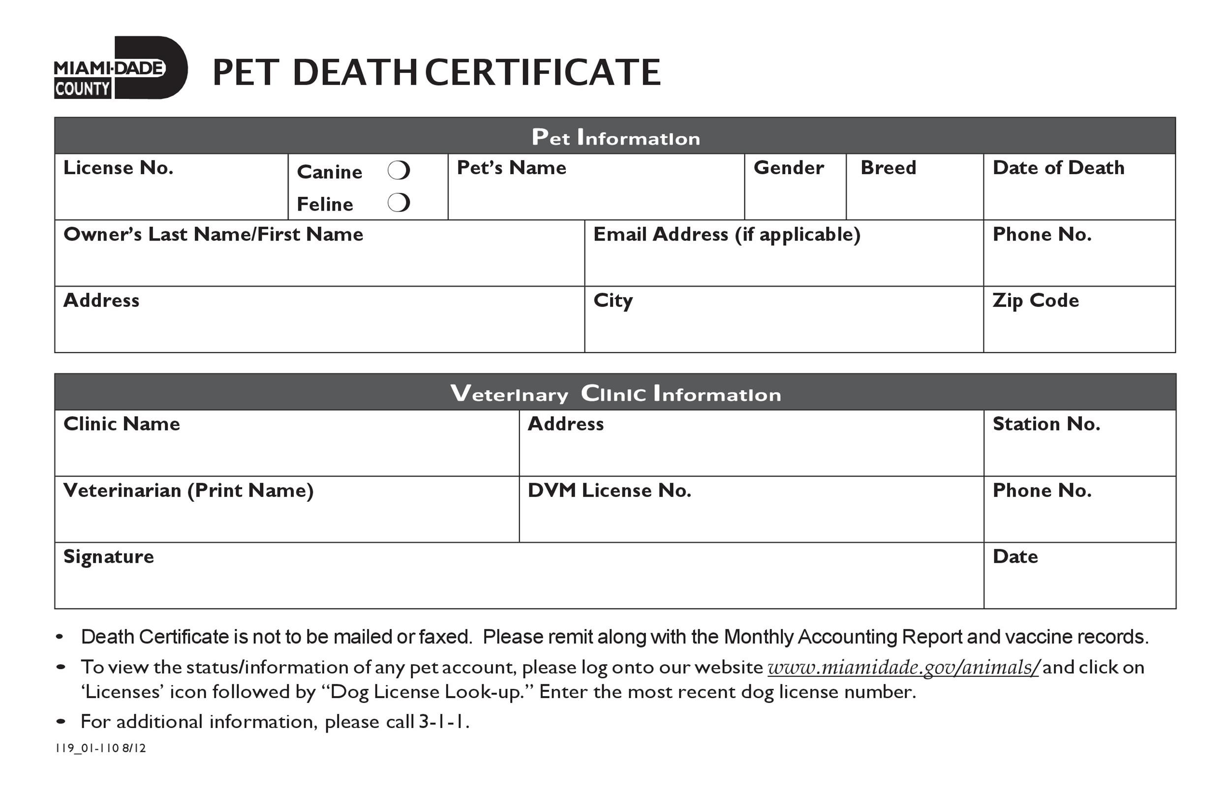 37 Blank Death Certificate Templates 100 FREE ᐅ Template Lab
