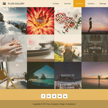 Free Gallery Website Templates by templatemo