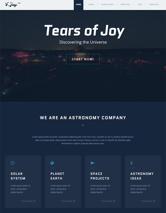tjoy dark wordpress theme