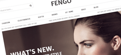 more best minimal magento themes feature