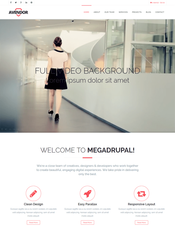 avendor one page drupal themes
