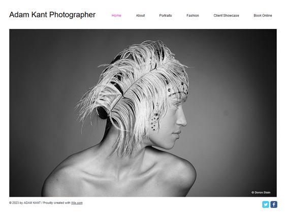 online photos portfolio wix templates
